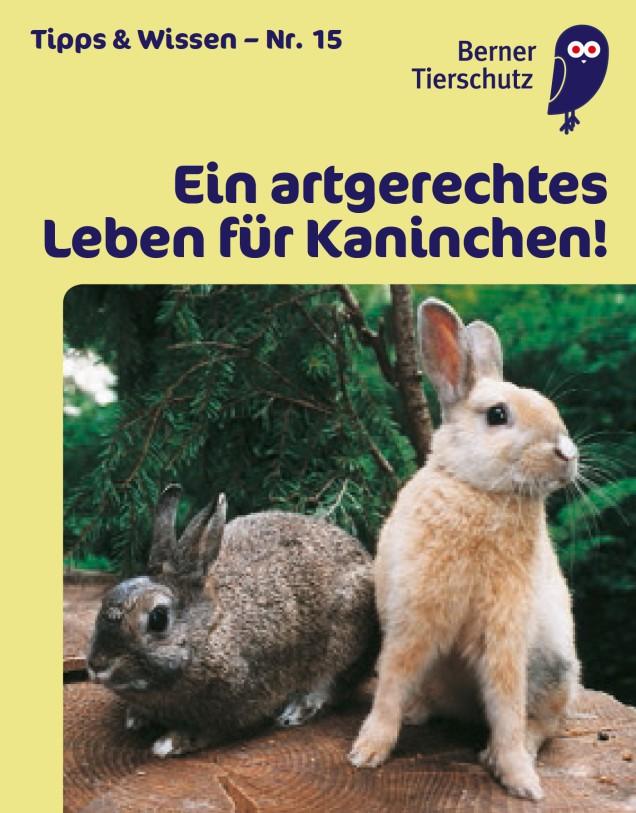 Minibooklet 15 Titelseite