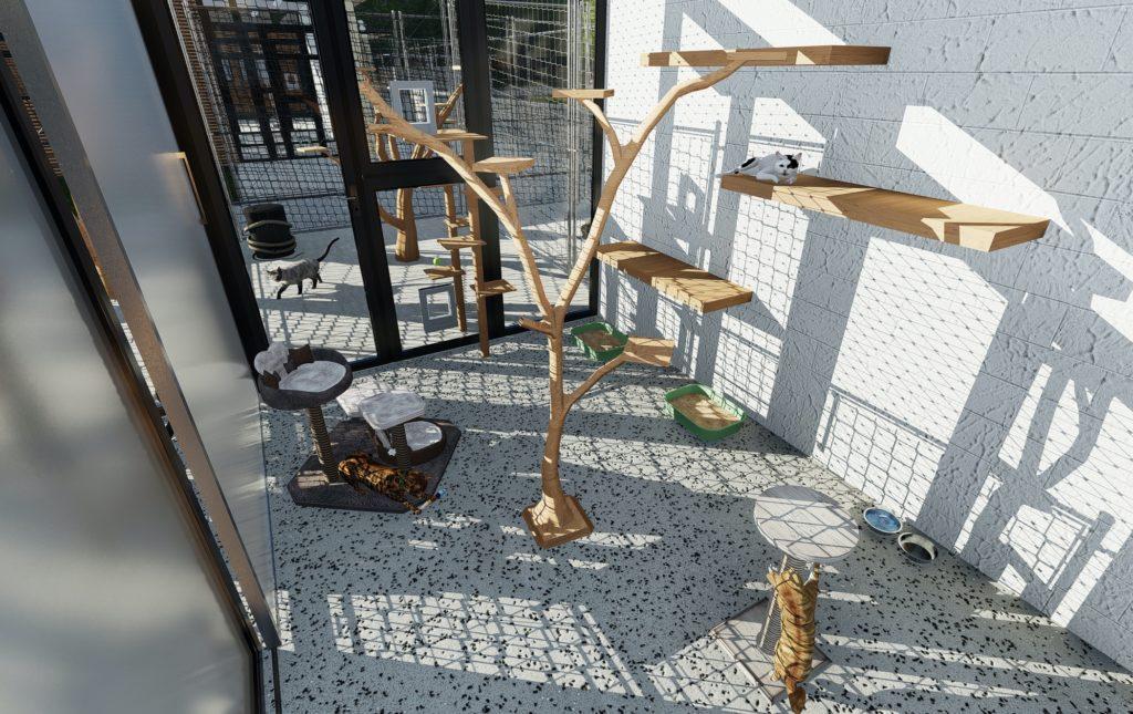 Katzenhaus 1 Innenansicht Katzenzimmer